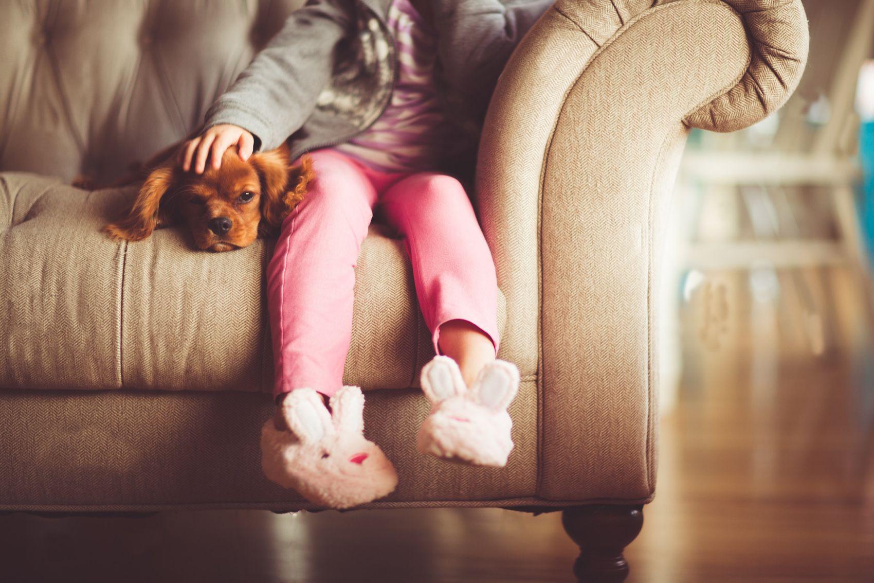 Beneficios en nuestra salud al tener un perro en nuestras vidas