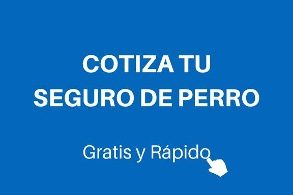 COTIZA-TU-SEGURO-DE-PERRO